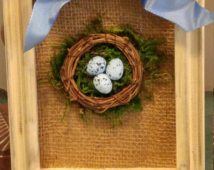 Featured listing image: Garden Bird's Nest Shadowbox With Moss