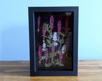 Black Shadowbox with Pressed Dried Flowers