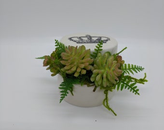 Ceramic Lidded Box with Succulents