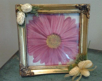Gold Frame with Flowers
