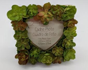 Mini Succulent Heart Picture Frame