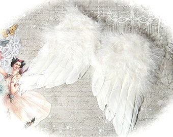 When light-winged toys of feathered cupid dating