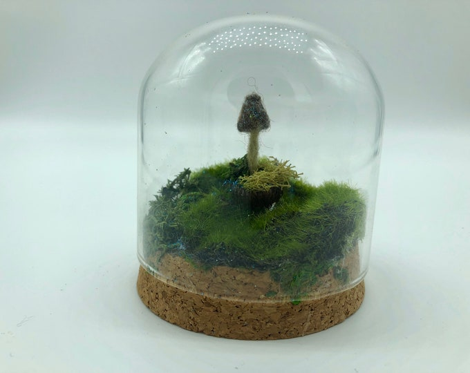 Fairy mushroom under glass- teeny tiny