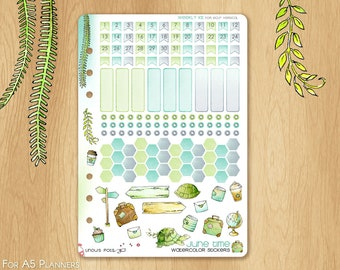 JUNE 17 - Watercolor Stickers For Travels Fitting A5 Planners (Kikkik.k, Filofax, Carpe Diem, etc...): Monthly Numbers, Hexagons & Eventboxs