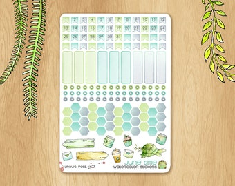 JUNE 2017 - Watercolor Stickers For Travels, Perfectly Fitting Erin Condren Life Planners and Happy Planners: Monthly Numbers, Hexagons