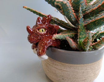 Plant pot dragon guardian