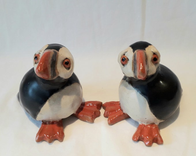 Pair of Puffins. Clowns of the sea.
