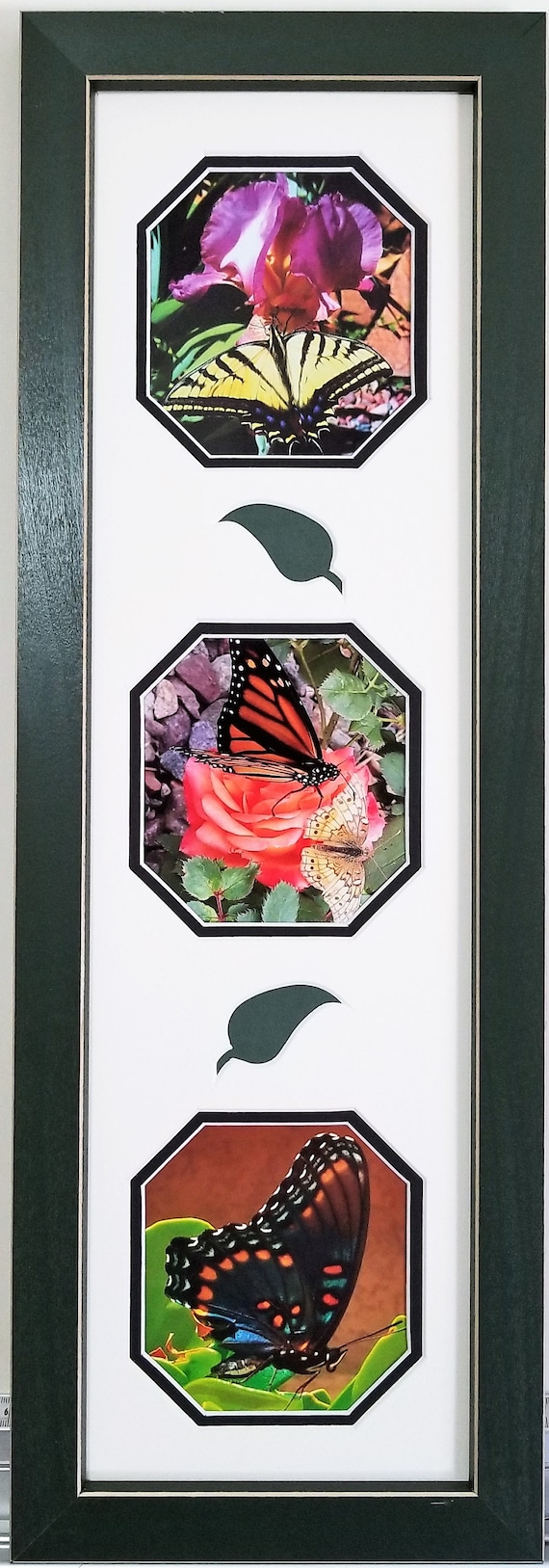 Butterfly photos custom framed and matted picture with three cutouts and decorative leaves for home decor and gift giving ready to hang