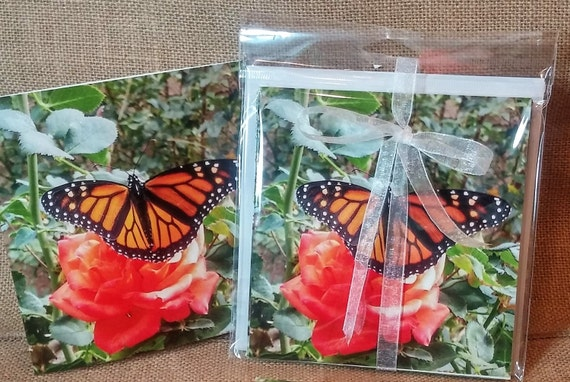 Butterfly note card and Greeting Card with Monarch Butterfly blank inside with envelopes tied with ribbon package of eight