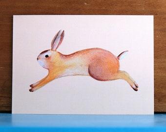 Hare Card - Stationary Cute Rabbit - Home deco bunny card Birthday Love Anniversary Pink playroom Blanco Kawaii Cute
