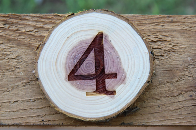 Custom Wood Branch Table Numbers  Set of 5 Good for Rustic image 0
