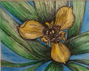 Marvelous Mystery Flower - Original Matted Painting