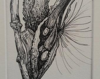 Monarch's Milkweed - Original Matted Ink Drawing