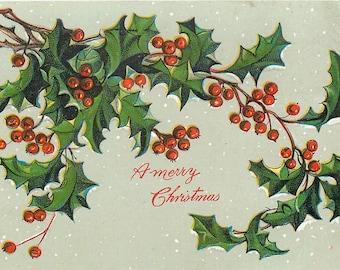 Merry Christmas, Christmas Holly, Holly Christmas, Holly Merry, Holly Card, Merry Christmas Holly, Card Merry Christmas, Raphael Tuck, Tuck