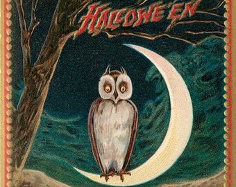 Quarter Moon, Owl Moon, Halloween Moon, Halloween Owl, Moon Owl, Owl Halloween, Moon Halloween, Halloween Quarter Moon, Raphael Tuck Art