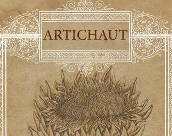 Artichoke Drawing, Artichoke French, French Artichoke, Artichoke Botanical, Botanical Art, Artichoke Art, French Art, Artichoke Print, Art