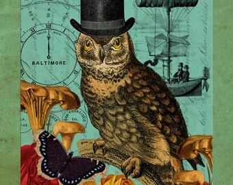 Steampunk Male, Male Steampunk, Male Owl, Steampunk Owl, Owl Male, Owl Collage, Owl Steampunk, Steampunk Collage, Collage Owl, Male Collage