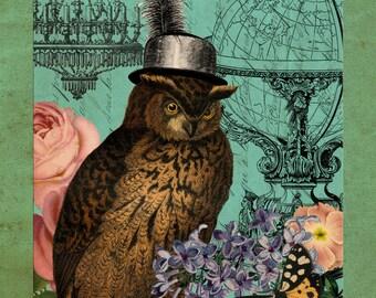 Female Owl, Steampunk Female, Female Steampunk, Owl Female, Steampunk Owl, Owl Collage, Owl Steampunk, Steampunk Collage, Collage Owl, Print