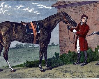 Horse Art, Victorian Horse, Horse Decor, Horse Gift Ideas, Equestrian Prints, Equestrian Decor, Equine Art, Horse Wall Art, Equestrian Gifts