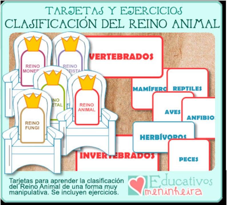 Tarjetas Clasificación del Reino Animal español image 0