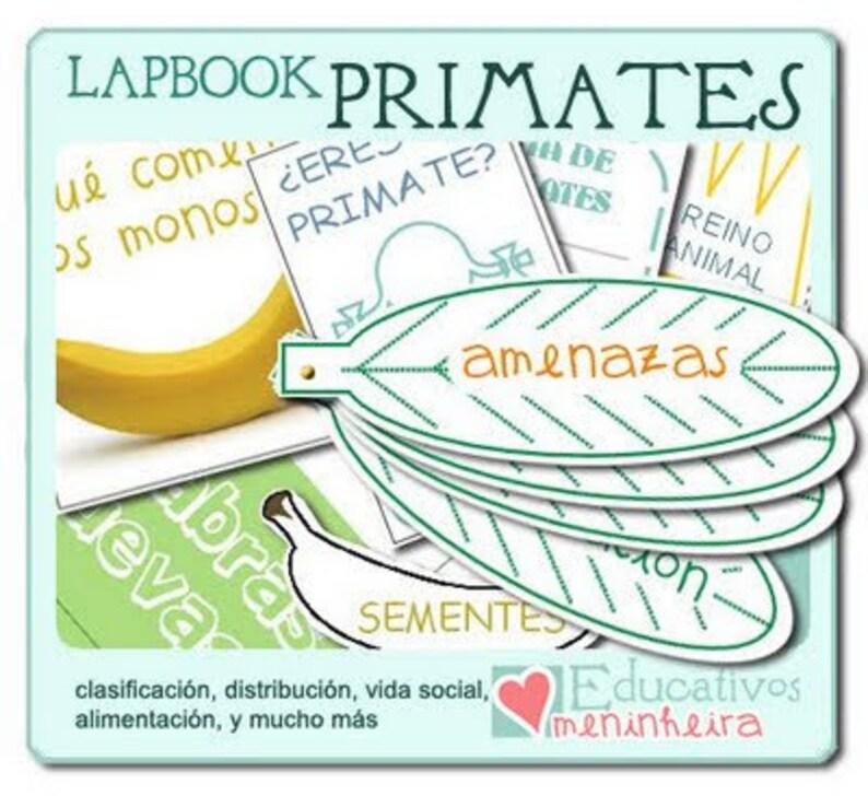 Lapbook sobre los primates español image 0