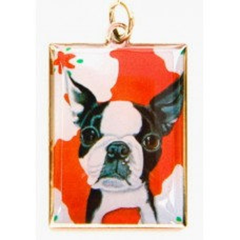 acrylic gift box BOSTON Pack Gift Box puppy dog whimsical 6 Cards Magnet and Charm