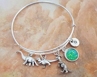 Dinosaur Bangle, Dino Jewellery, Jurassic Charm Bracelet, Dinosaur Jewellery, Adustable Bangle, Historical Gift, Dinosaur Gift, Dino Charms