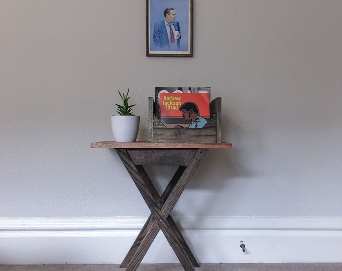 10inch Vinyl Record Storage  // Protects and Displays your Collection of up to Fifty 10 inch vinyl records