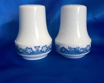 Blue n White Salt & Pepper  Flowery Pattern