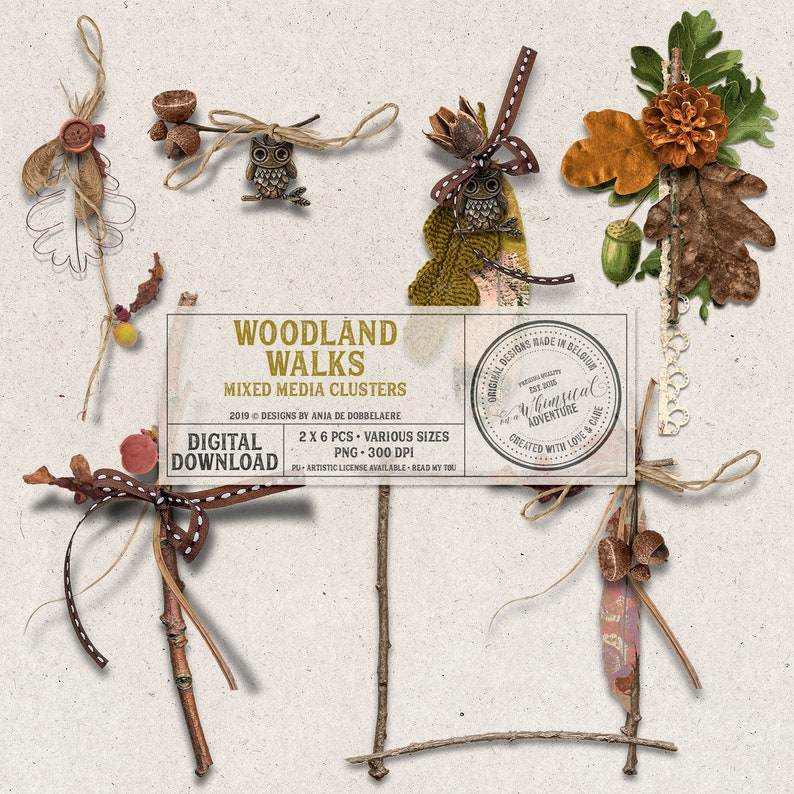 Autumn Clipart Twigs and Leaves Woodland Pine Cones Digital image 0