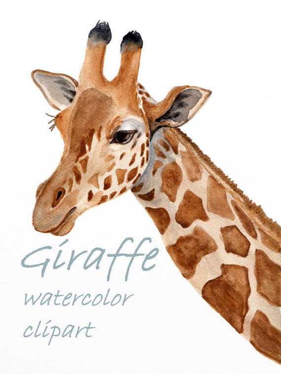 Watercolour,Print NEW,Giraffe,Sale,Original Card Gift,Wildlife,Animal,Art,