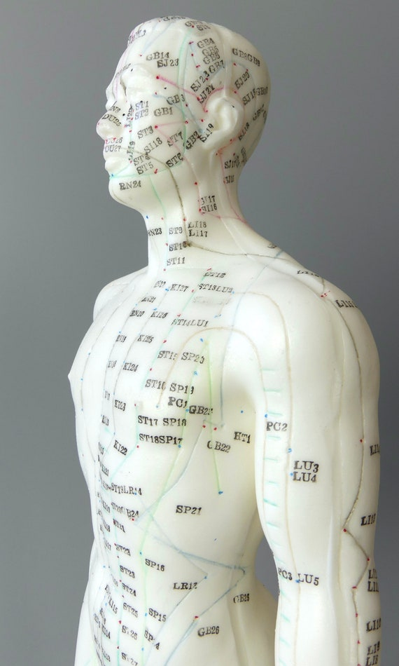 Mannequin Dacupuncture Homme Médecine Chinoise Etsy