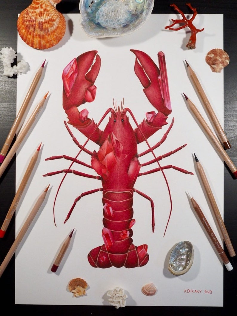 Ruby Lobster Coloured Pencil Illustration July Birthstone Ocean Lovers Gift Decoration Red Fine Art Print