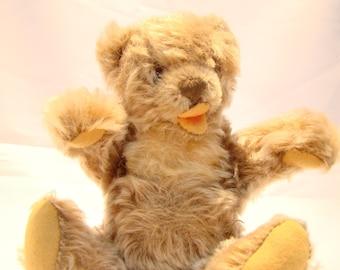 Vintage Steiff growling teddy