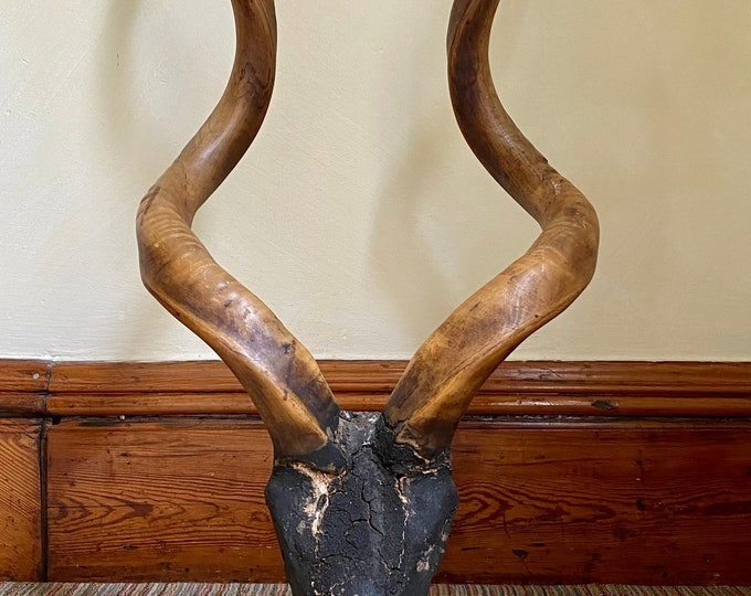 Antique African Kudu horns with carved wood skull in patinated finish