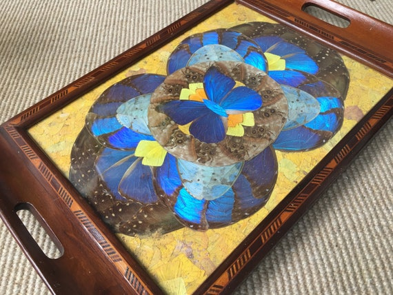 Brazilian Art Deco butterfly tray with exotic wood marquetry