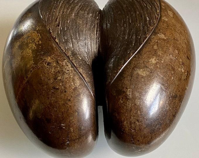 Vintage Coco de Mer Lodoicea Maldivica polished nut