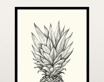 8x10 Pineapple Drawing - Printable Art