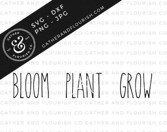 Rae Dunn Inspired Bloom-Plant-Grow Labels SVG, Rae Dunn SVG, Farmhouse SVG, Decal Cut Files