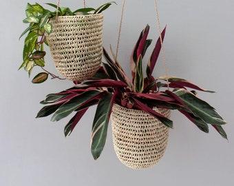 Dome Hanging Basket