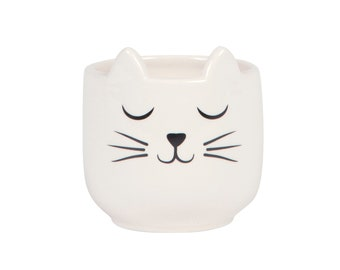 Cat's Whiskers Mini Planter