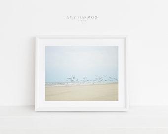 Seagulls, Beach Print, Ocean, Sand, Blue Sky, Digital File