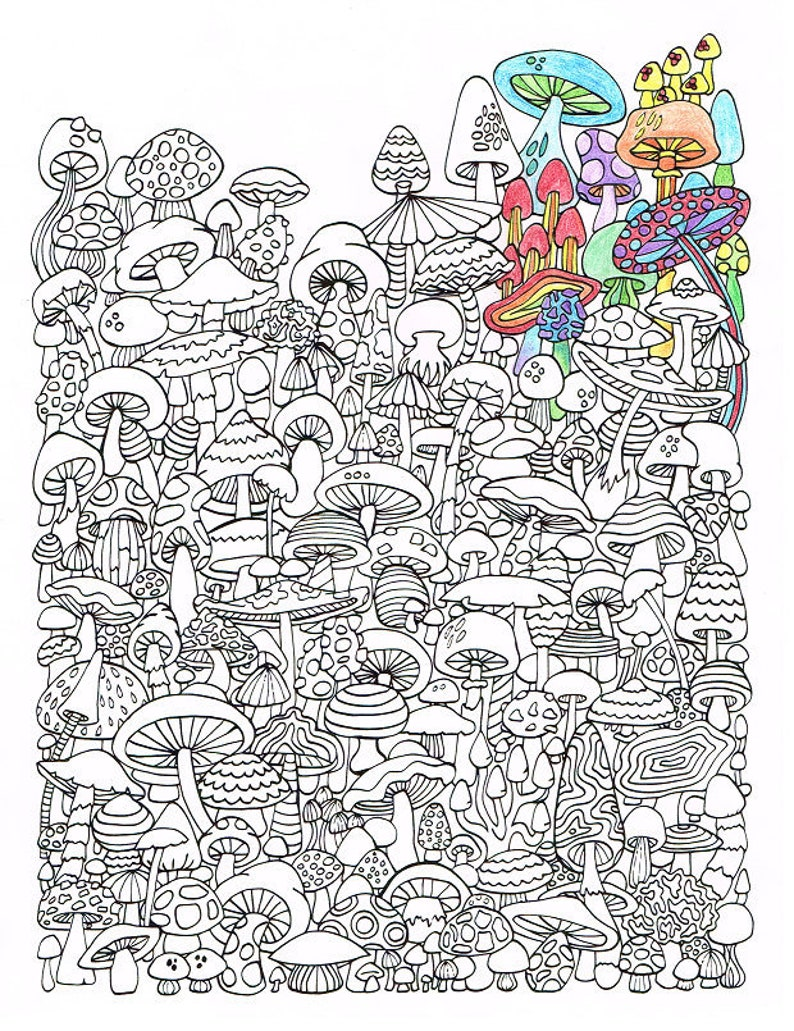 Adult Coloring Page Mushrooms Printable