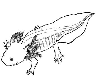 A is for Axolotl