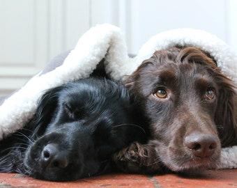 Luxury Dog Snuggle Sack/Dog Blanket/Dog Bed/ dog snuggle blanket/dog fleece blanket/dog sleeping bag/ star fleece blanket/