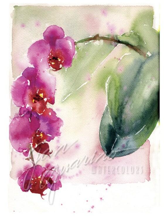 Peinture Daquarelle Fleur Orchidee Rose Etsy