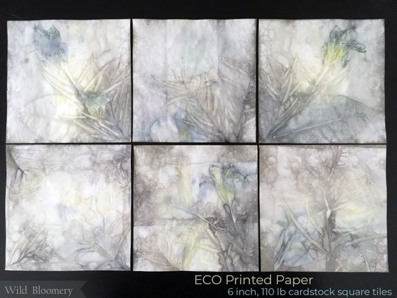 ECO Dyed Paper Tiles 6 inch Squares Batch No. 0004 - 6 in Square, 110 lb Cardstock ECO Printed Paper - Plant Dyed Boiled Paper Art Prints