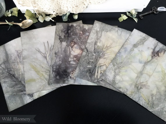 ECO Printed Paper 6 inch Square Tiles Batch No. 0003 - 6 in Square, 110 lb Cardstock ECO Dyed Paper - Plant Dyed Boiled Paper Art Prints