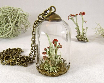 Lichen necklace, terrarium necklace, moss pendant, nature jewelry, real flower pendant