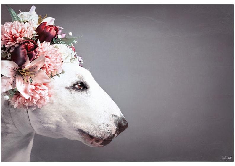 Flower Princess  Bull Terrier Photographic Art Print image 0